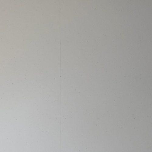 佐野市,天井塗り替え,日本ペイントのケンエース